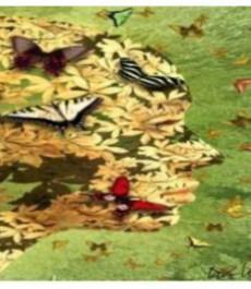 Французский философский клуб: От йоги к нейронаукам: древний и новый взгляд на пару «удовольствие-страдание»