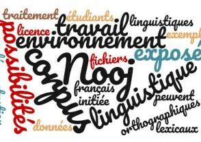 """Intervention de Vincent Bénet : """"Traitement automatique de corpus avec le logiciel Nooj, environnement linguistique multilingue"""""""